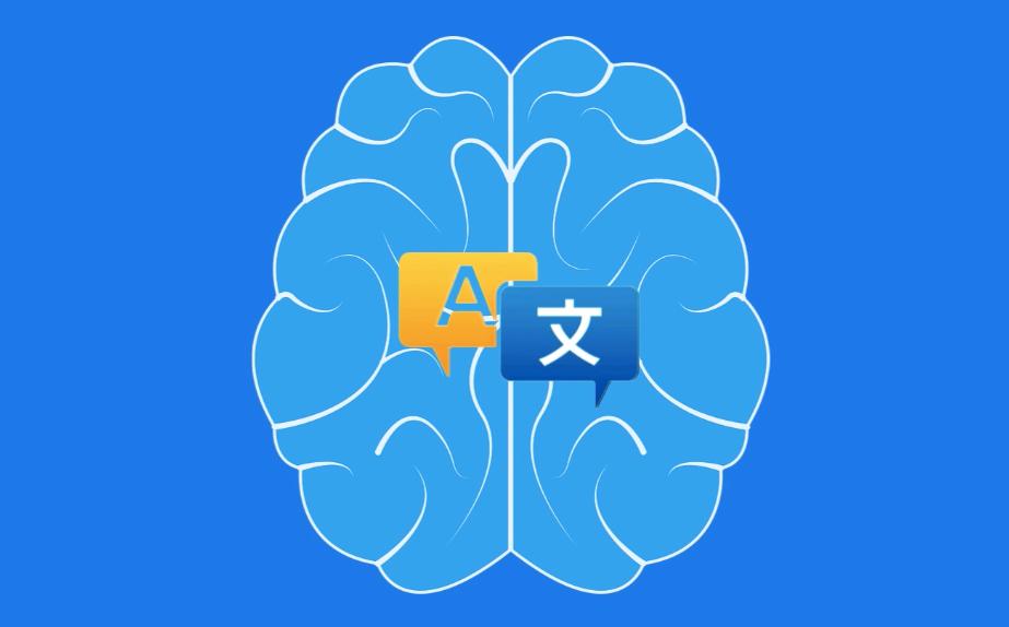 translation memory app